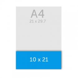 carte de correspondance 10 x 21 cm