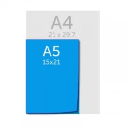 Liasses A5 (15x21cm) autocopiantes 2 ou 3 feuillets