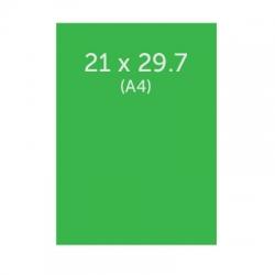 Flyers 21 x 29.7 cm, ECO 130g