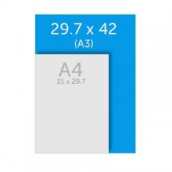 Affiche A3 (29.7 x 42 cm)