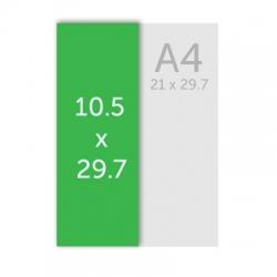 Flyers 10 .5 x 29.7 cm
