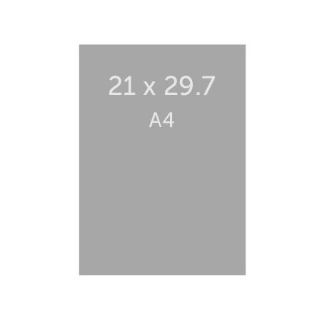 Flyer 21 x 29.7 cm (A4) vernis paillette